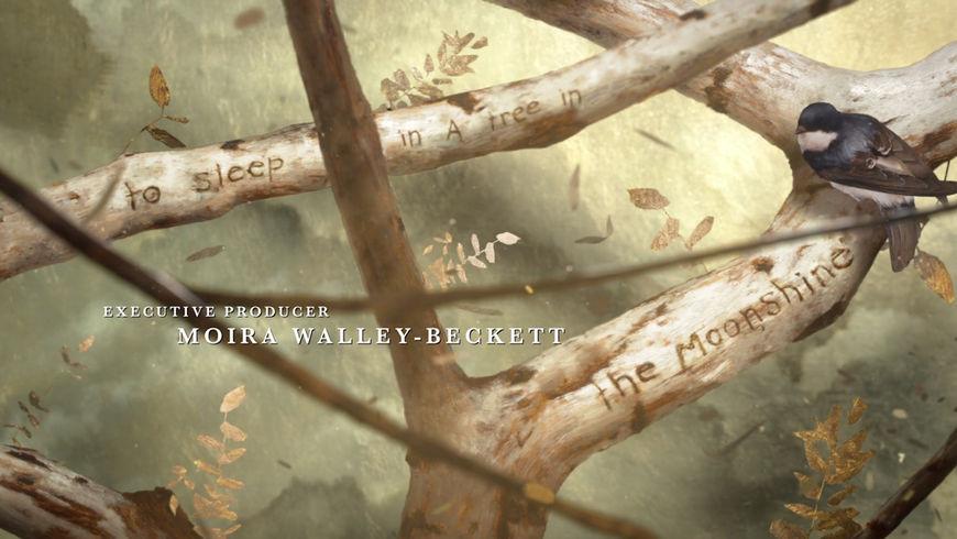 IMAGE: Still - branch carvings