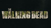 The Walking Dead (Season 9)