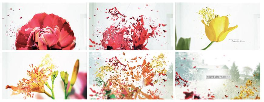 IMAGE: Alternate storyboards –Shattering flowers