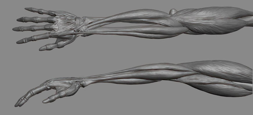 IMAGE: Westworld Arm Render