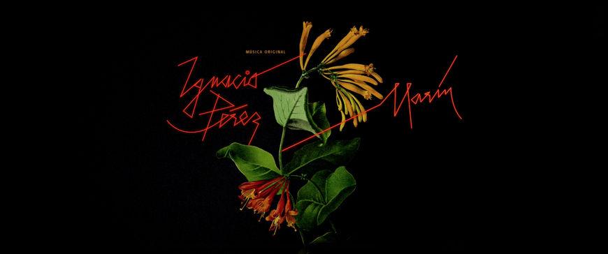 IMAGE: Still - Credit - flowers Ignacio