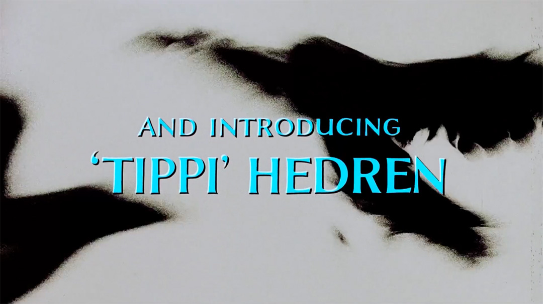 IMAGE: Still – And introducing Tippi clean